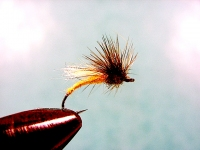 Mohican Emerger